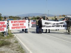 Lady's Mile business owners protest lack of tourist services