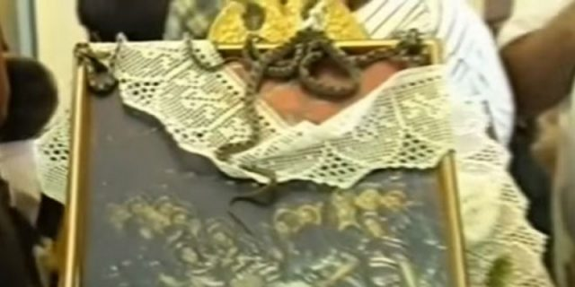 Snakes swarm Kefalonia church in preparation for Greek festival