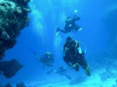 Diving in Paphos