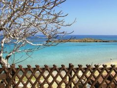 Fig Tree Bay beach one of most photographed on Instagram