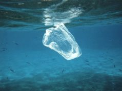 Preventing plastic reaching the Mediterranean