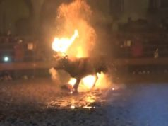 Bull set on fire by locals during Spanish festival (WARNING: Disturbing VIDEO & PHOTOS)