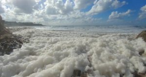 Cappuccino coast phenomenon on Paphos beach (pictures)