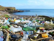 Cyprus at serious risk of missing recycling targets