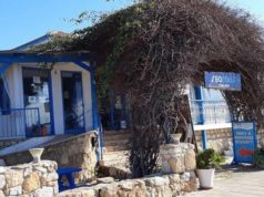 Bar Review: Searays Cafe bar, Paphos