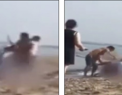 Naked man brawls with lifeguard on the beach in Occupied Cyprus! (VIDEO)