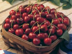 Cherry Festival at Platanistasa