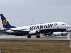 "Ryanair aircraft heading to Cyprus forced to turn round after unexpected ""Birdstrike"""