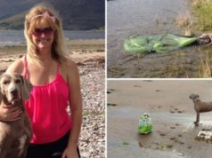 Loli the dog fetches plastic rubbish from the beach to help her owners recycle it