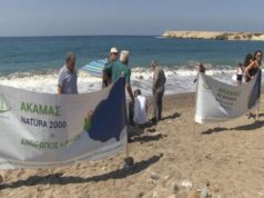 Local residents and Animal Party butt heads in Lara beach protest