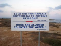 Plenum lifts dog ban on beaches but with exceptions