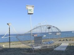 Fifth fish for recycling placed on Cyprus beach