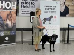 Dogs used to detect coronavirus in pilot project at Helsinki airport