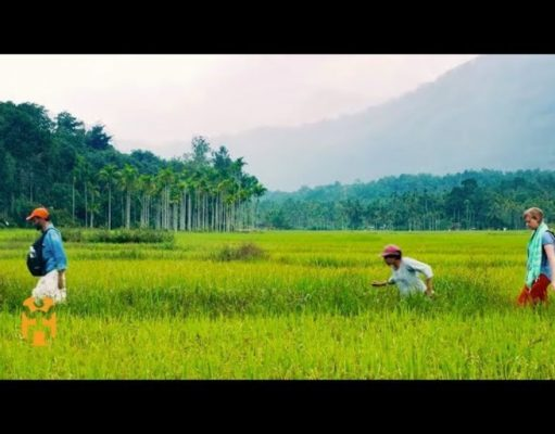 Embracing sustainable tourism in Kerala