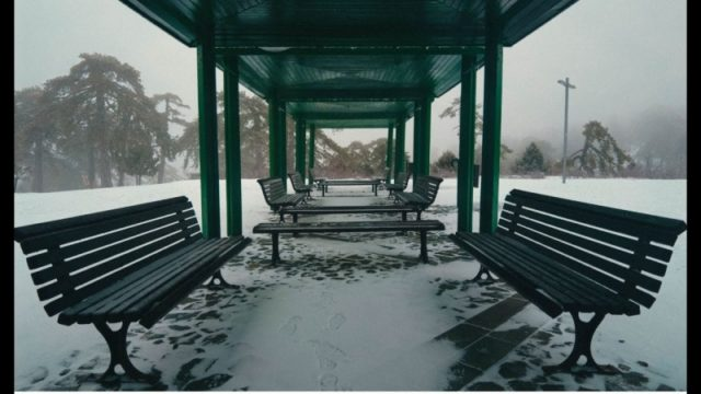 White and misty Troodos: a walk in winter's silence