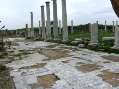Marble sale from ancient Salamis on ebay prevented by Dutch Cypriot activist