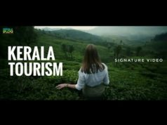 Kerala: a serene land of waterways, spices and festivals