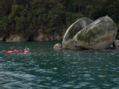 Nelson Tasman: New Zealand's South Island region of culture and play
