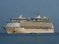 Royal Caribbean delays new cruise liner launch after crew tests positive for Covid-19